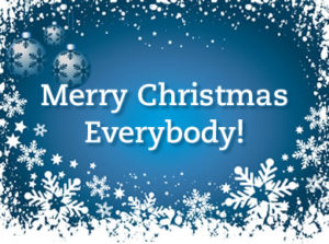 Merry Christmas (and Happy Holidays) from Blue Gurus! – Blue Gurus