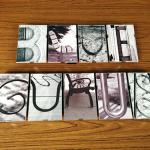 Blue Gurus Art - Signature Snapshots