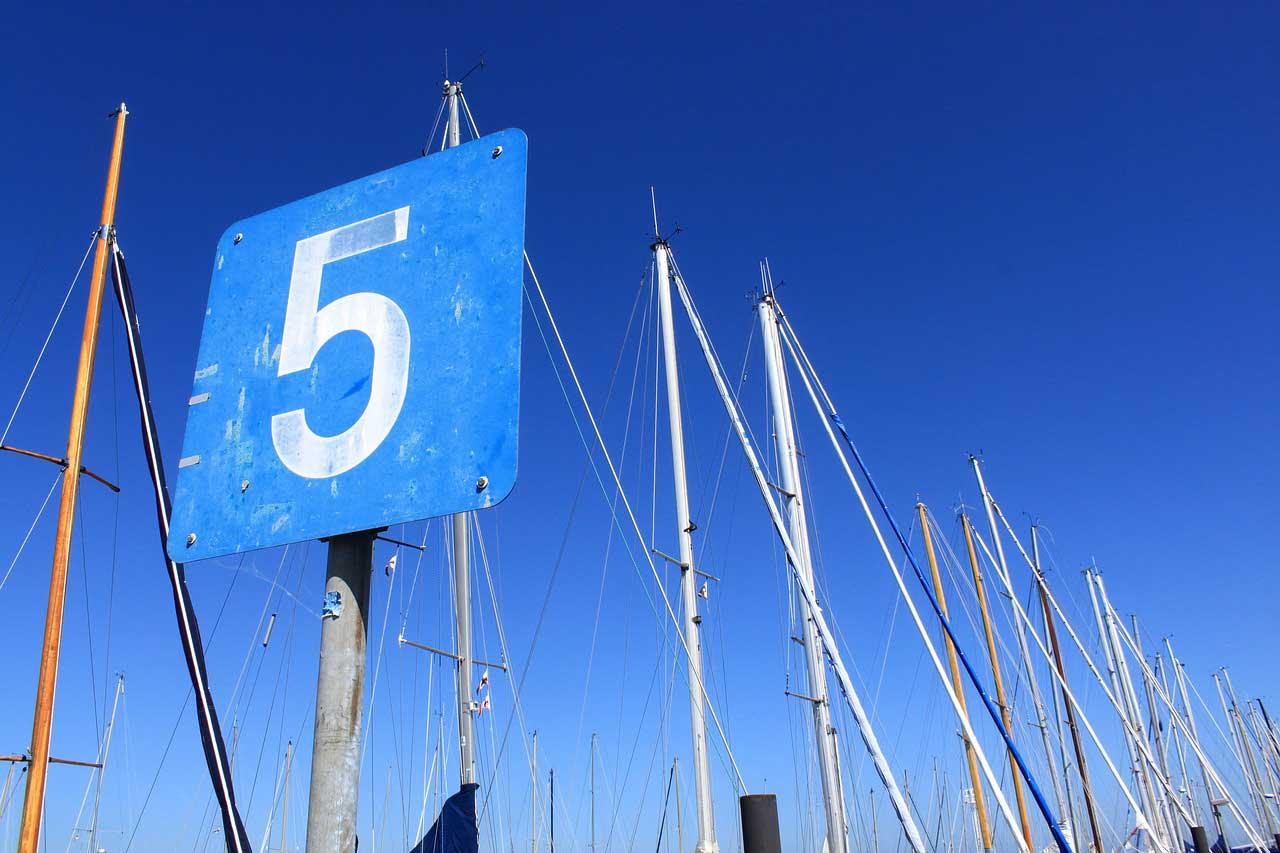 Blue Gurus: 5 Tips